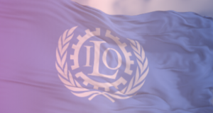ILO (International Labour Organization): Improve and harmonize the whole recruitment process, for candidates and HR staff